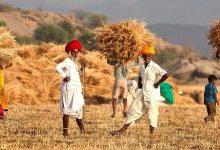 Photo of নীতি ও রাজনীতির বিতর্কে ভারতের কৃষিক্ষেত্র