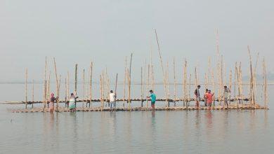 Photo of ছট পুজোর প্রস্তুতি কোচবিহারে, নদীর জল গভীর থাকার জন্য শুরু সাঁকো তৈরির কাজ