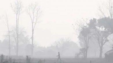 Photo of রবিবার থেকে নামতে পারে তাপমাত্রা, আগামী সপ্তাহ থেকেই শীতের ব্যাটিং শুরু