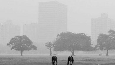 Photo of শীতের প্রবেশে বাধা, বাড়বে তাপমাত্রা, ঘনীভূত হচ্ছে নিম্নচাপ