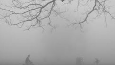 Photo of কনকনে শীতের অপেক্ষায় তিলোত্তমা